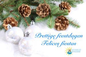 Uw Huis in Spanje wenst je fijne feestdagen en een sprankelend 2021!